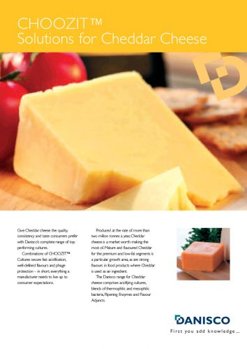 CHOOZIT® Cultures for Cheddar Cheese