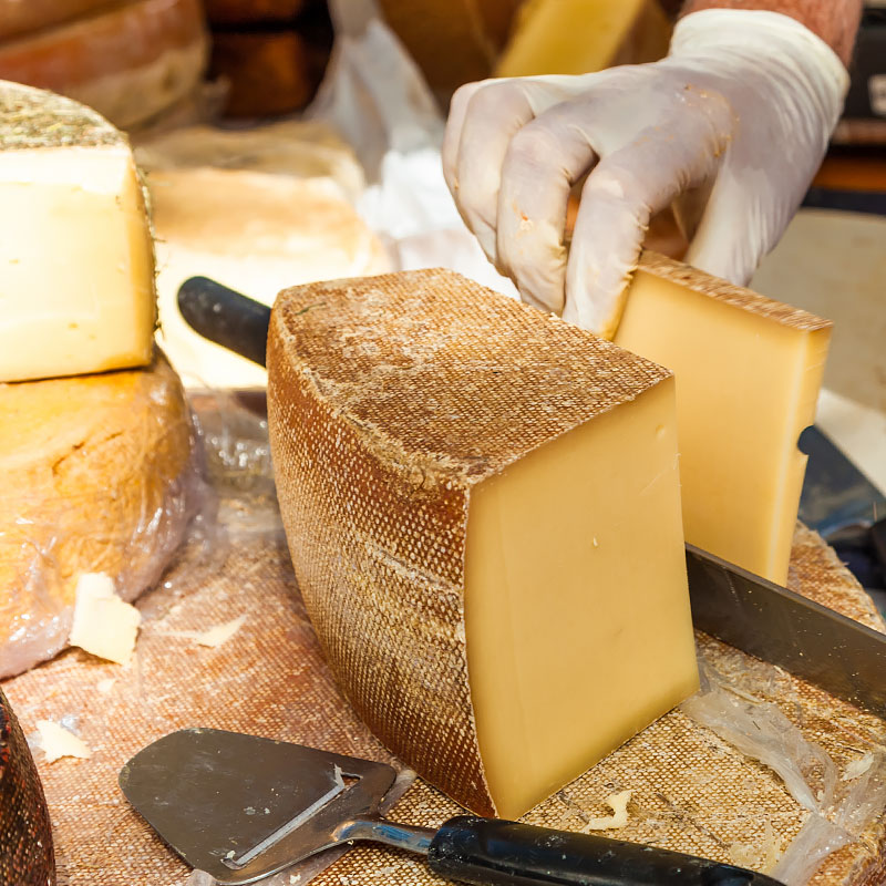 Cheese making cultures case studies