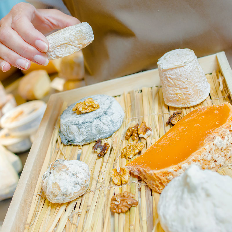 Cultures and Ingredients for Artisan and Domestic Cheese Makers