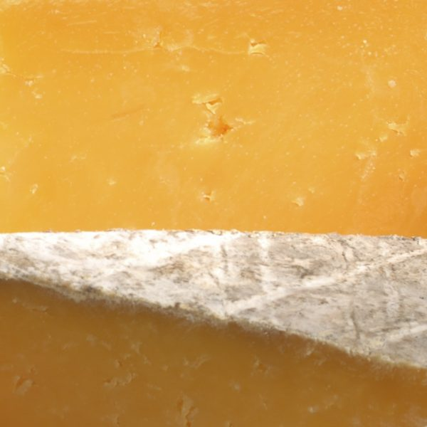 Coagulant in the production process of cheese