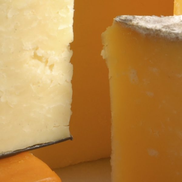 Coagulants from Orchard Valley Dairy Supplies