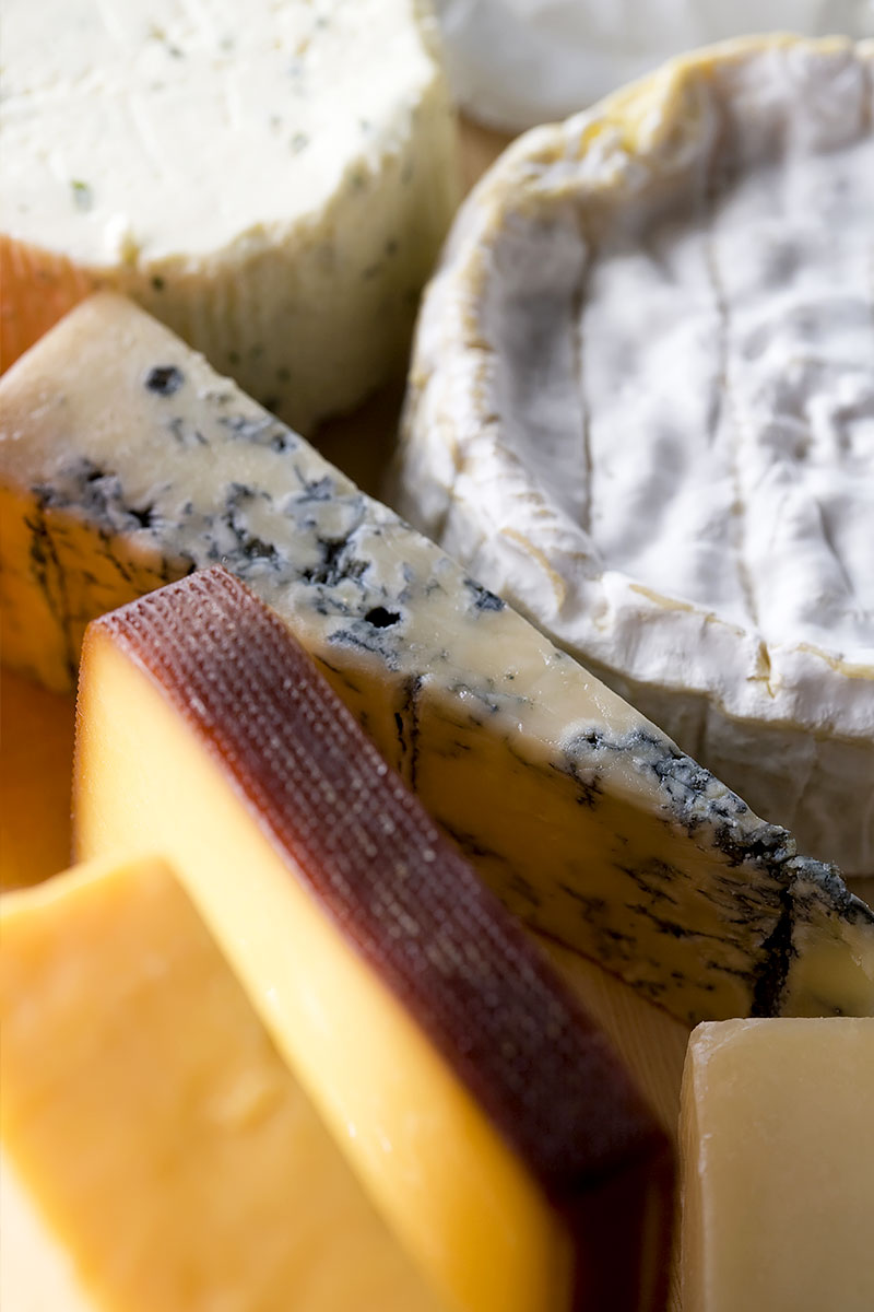 Cultures for Cheese and Yoghurt Making