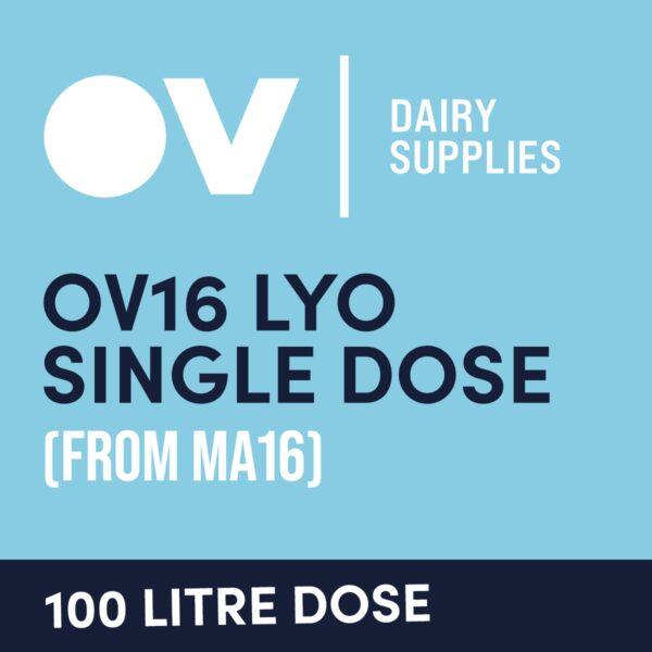 Cheese culture OV16 LYO single dose (from MA16) 100 Litre