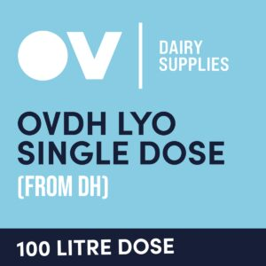 Cheese culture OVDH LYO single dose (from DH) 100 Litre