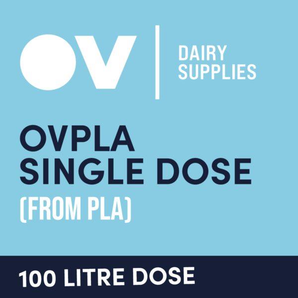 Cheese culture OVPLA single dose (from PLA) 100 Litre
