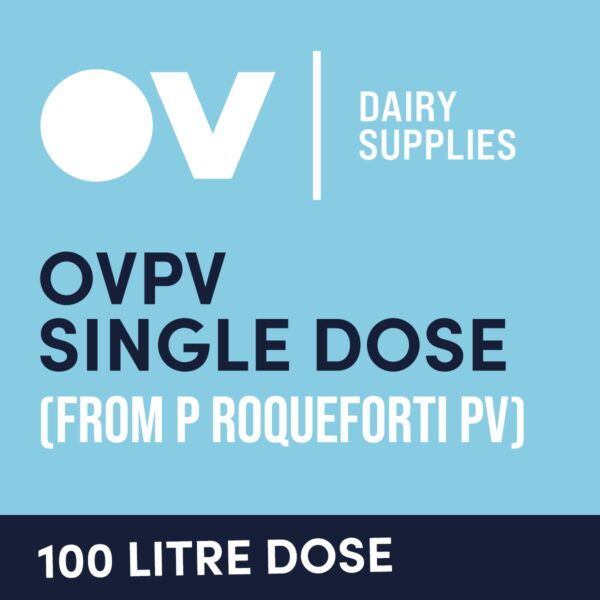 Cheese culture OVPV single dose (from P Roqueforti PV) 100 Litre