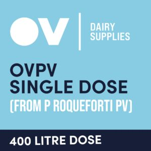 Cheese culture OVPV single dose (from P Roqueforti PV) 400 Litre