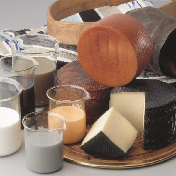 Viplast cheese coating from Orchard Valley Dairy Supplies